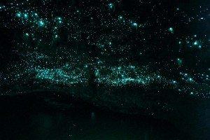 caverna-do-ceu-estrelado
